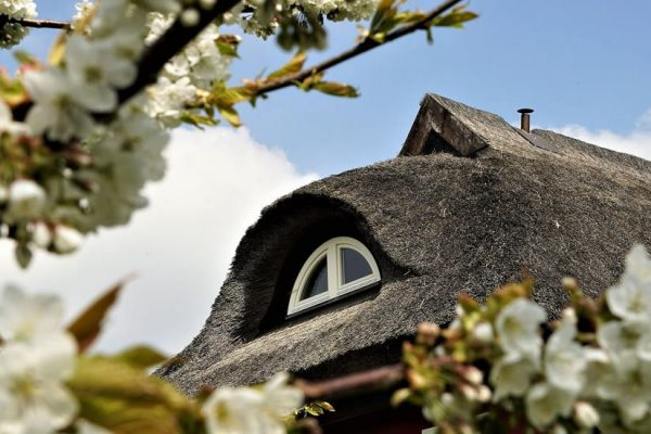 alt-reddevitz-auf-ruegen-urlaub-in-karolas-landhus