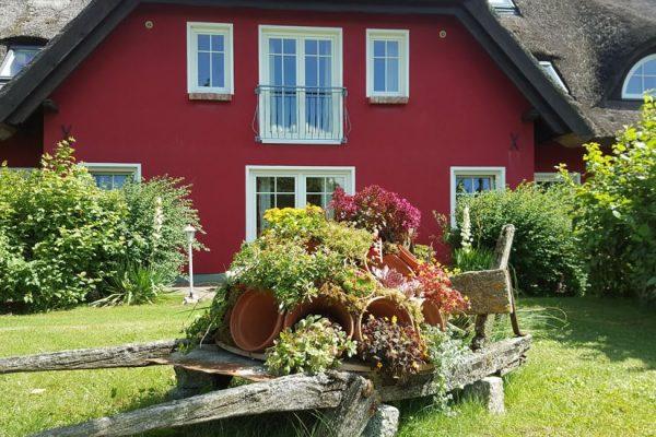 karolas-landhus-alt-reddevitz-insel-ruegen-buchen
