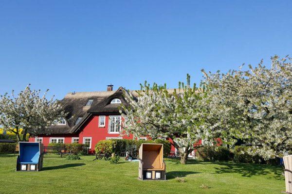 karolas-landhus-in-alt-reddevitz-auf-ruegen