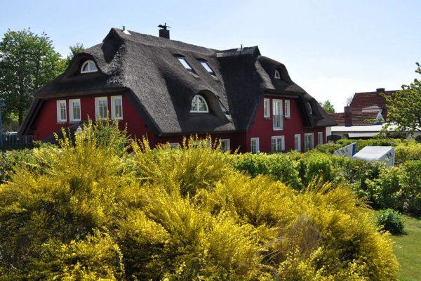 urlaub-auf-moenchgut-karolas-landhus-in-alt-reddevitz-auf-ruegen